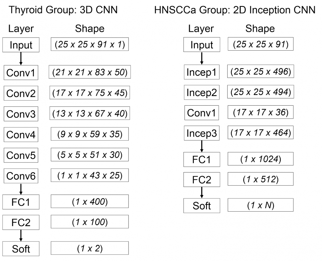 deep learning head and neck cancer detection figure 2